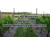 Over 40 New Jersey Wineries – 30sec TV Commercial[Video]