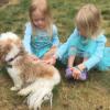Blessing of the Animals – Temple Rodeph Torah – VIDEO Marlboro, NJ  –  by TaraJean