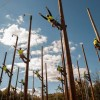 JCP&L Celebrates Careers in Utilities Week – by TOM COSENTINO